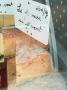 Brebis - Fermier au Piment d'Espelette (si jeune) en bloc