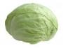 Chou-blanc pour salade et choucroute +/-1.2kg